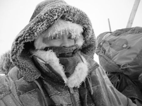 Dogsled ride Greenland